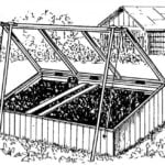 GREENHOUSES: FROM SMALL TO LARGE