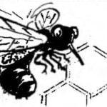 """BEE """"COMMUNAL"""""""