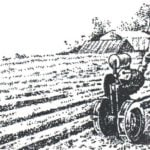 """""""BABY"""" PAVES THE FURROW"""