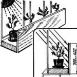 REFLECTOR FOR SEEDLINGS