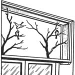 THE CAGE ON THE WINDOW